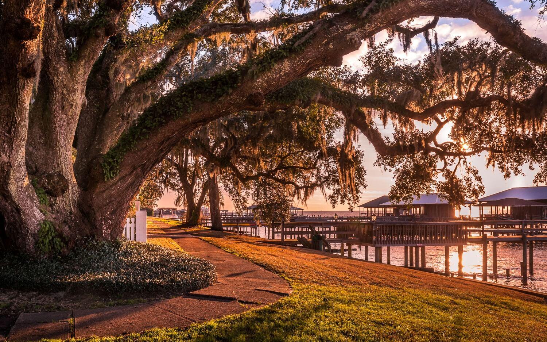Chimney Sweep Fairhope Alabama